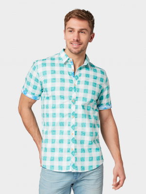 ray was, washed green printed check, XXL
