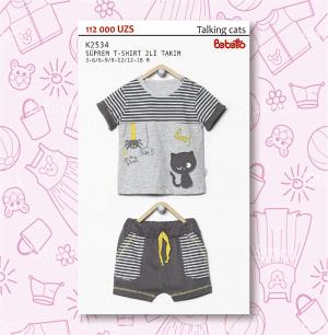 футболка+шорты (2534)